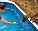 qrashswimming1